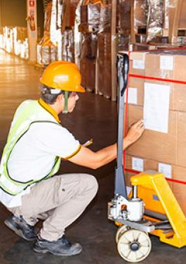 PRE-SHIPMENT INSPECTION (PSI) SERVICES